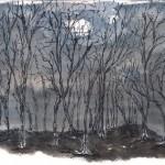 HJ42 Dark Forest